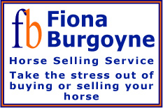 British horse selling services